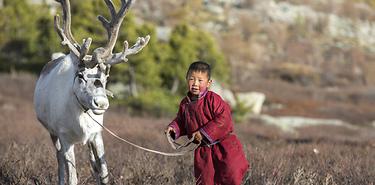 Mongolie en 4x4  : De Khangai à Khuvsgul