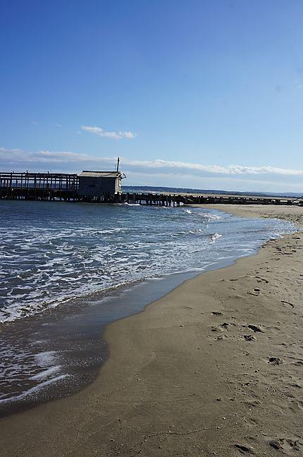 """La plage """"Du Rouet"""" de La Palme"""