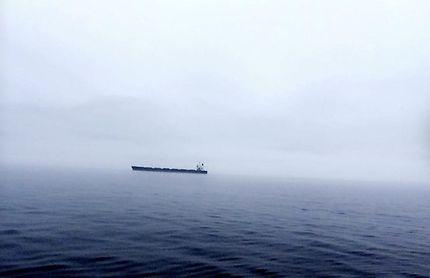 Excursion baleine à Tadoussac