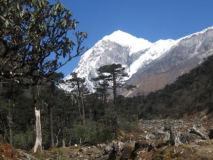 Trek vers le Khangchendzonga dans le Sikkim