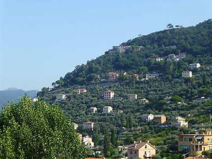 Maisons à flanc à Camogli