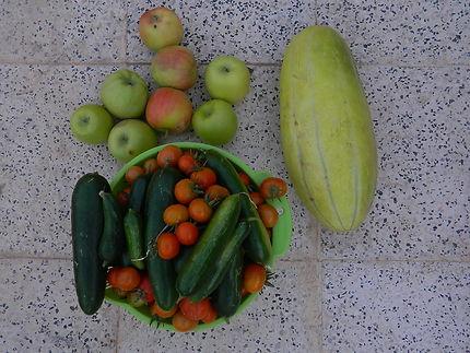 Fruits et légumes en été