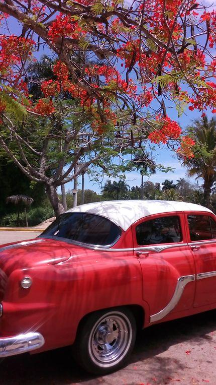 Façade cubaine à La Havane