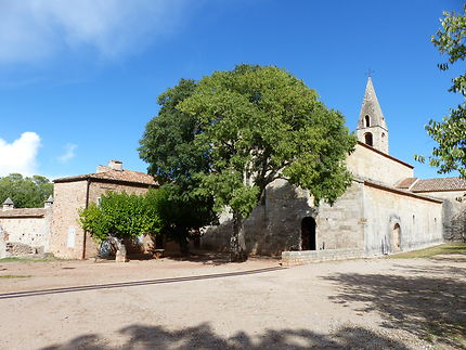Exceptionnelle Abbaye du Thoronet