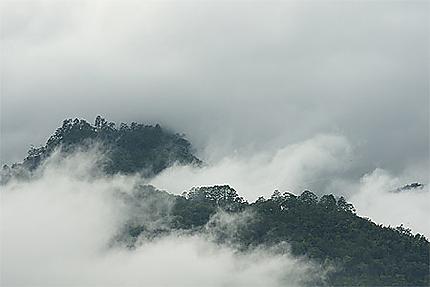 De la brume sur les hauteurs