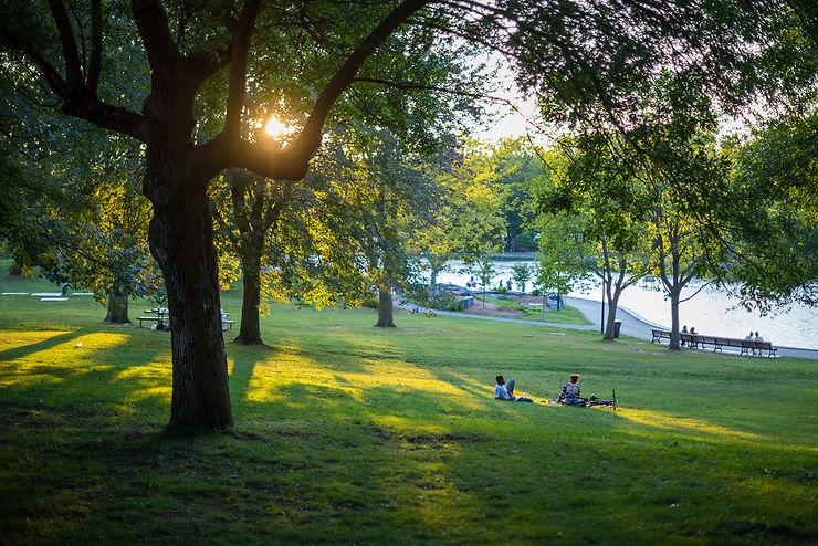 Montréal verte : le parc du Mont-Royal, une forêt couronnant la ville, et le jardin botanique