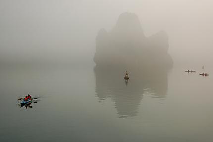 Matin magique baie d'Ha Long
