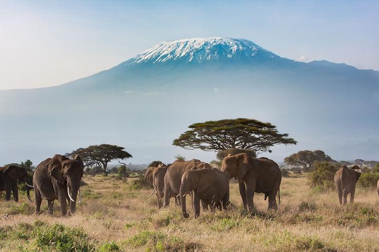 Formalités - Kenya : visa électronique obligatoire dès le 1er janvier 2021
