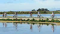 L'île de Ré à vélo