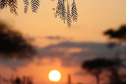 Flou sunrise