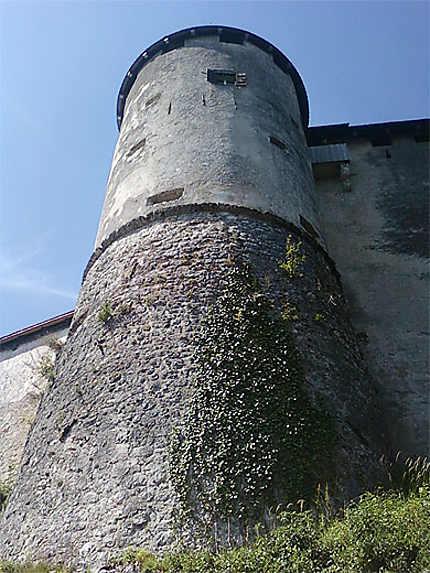 Tour du Château de Bled
