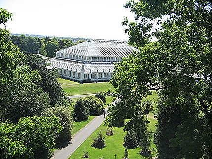 Sublime parc de kew gardens