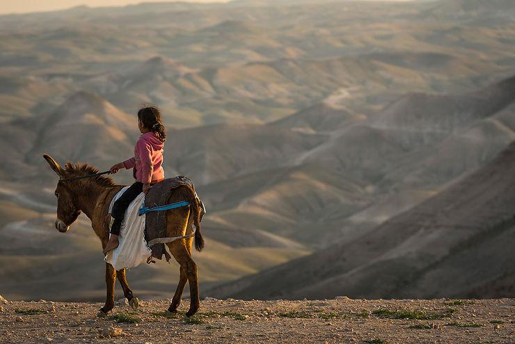 Petite bédouine sur son âne, étape Hébron - Beni Naïm