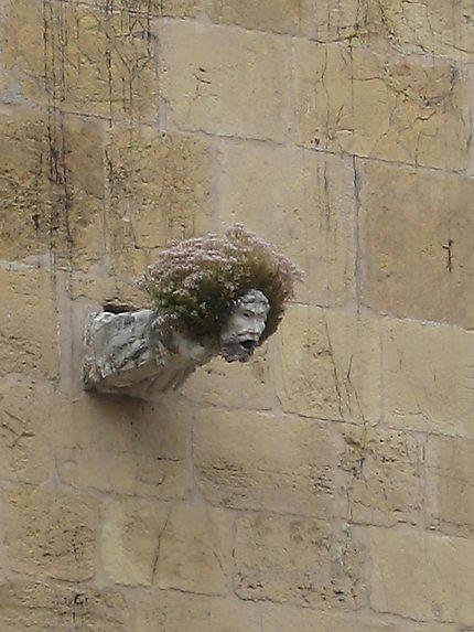Coimbra - cathédrale - gargouille
