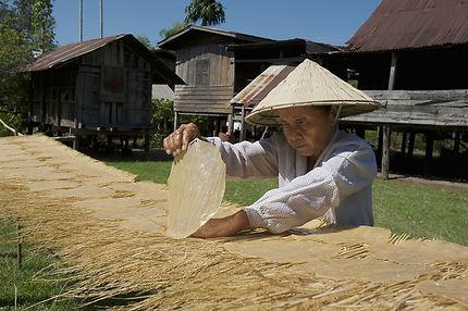 Galettes de riz