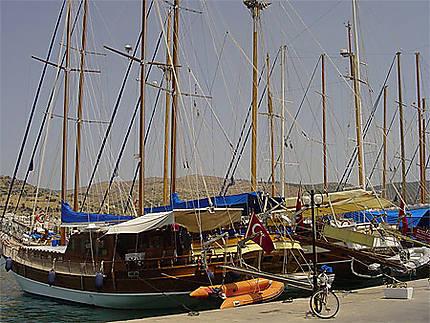 Gulets au port de Bodrum