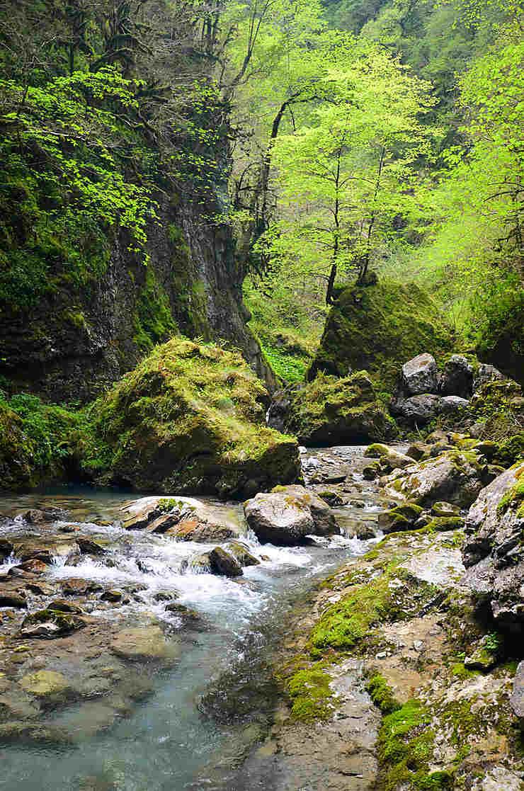Euskadi archéologique : Géoparc et grottes préhistoriques