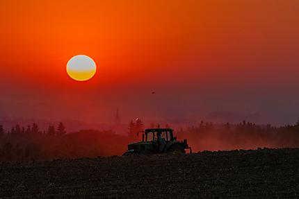 Labeur au coucher du soleil