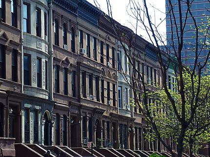 Rue à Harlem