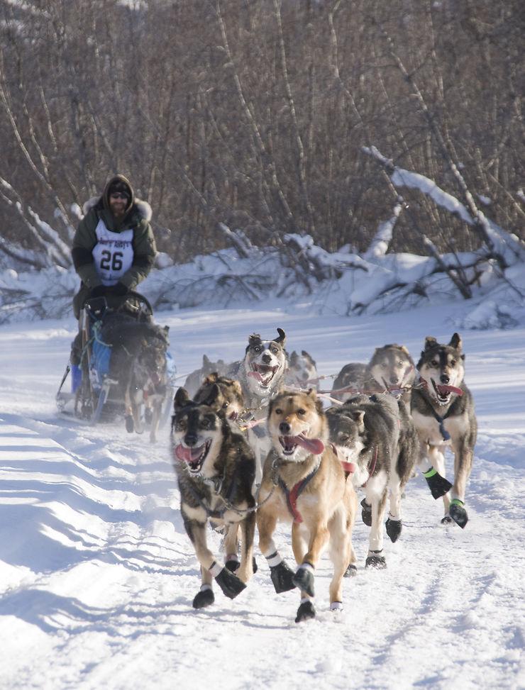 Yukon Quest à Whitehorse (Yukon)