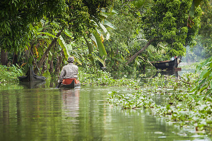 Kerala, au fil de l'eau