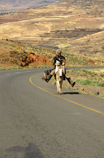 Sur la route au Lesotho, y a aussi des ânes !