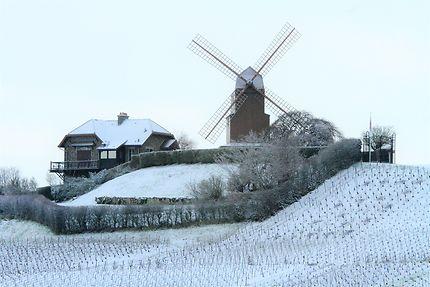 Moulin de Verzenay l'hiver