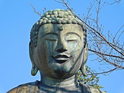 Tokyo - Zénitude près du temple Gokoku-ji