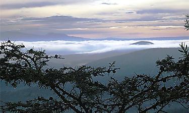 Vallée du Rift