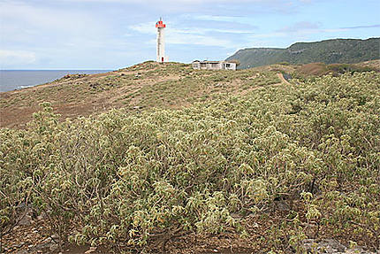 Le phare (La Désirade)