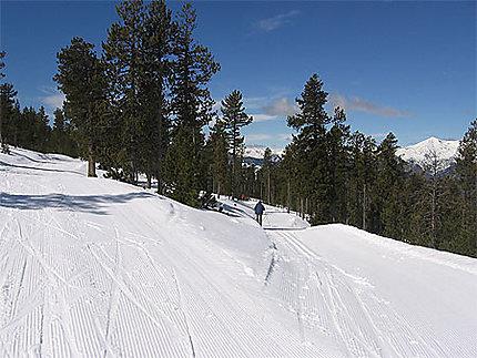 Pistes de ski de fond