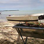 Halte sur l'île aux Bénitiers