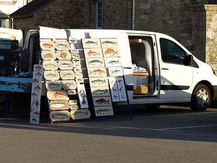 Culture mobile, Saint-Cado, Morbihan