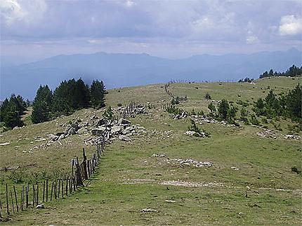 Frontière Franco-Espagnole dans le massif des Albères