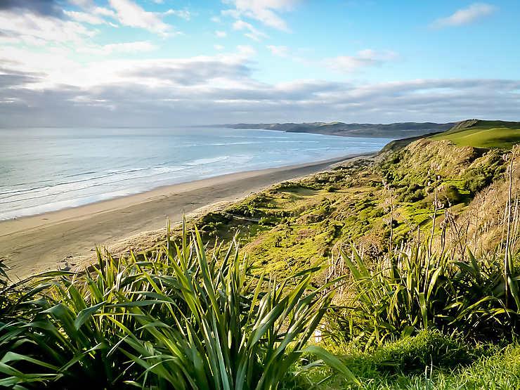 Manu Bay (Nouvelle-Zélande)