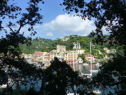 A travers les arbres à Portofino