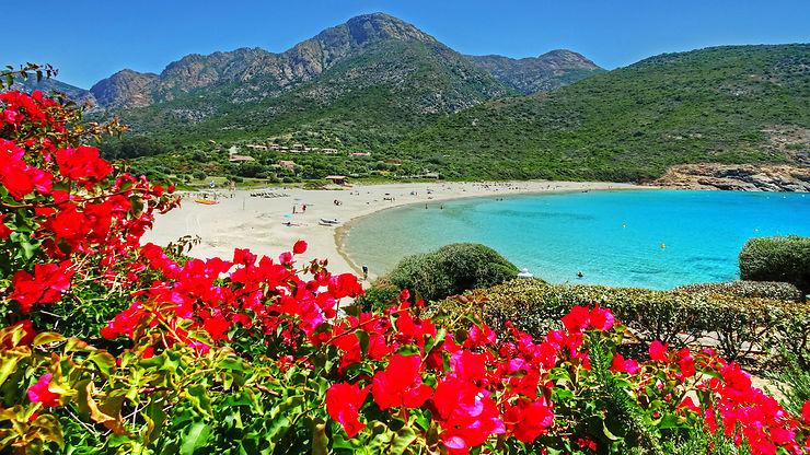 Arone, Corse