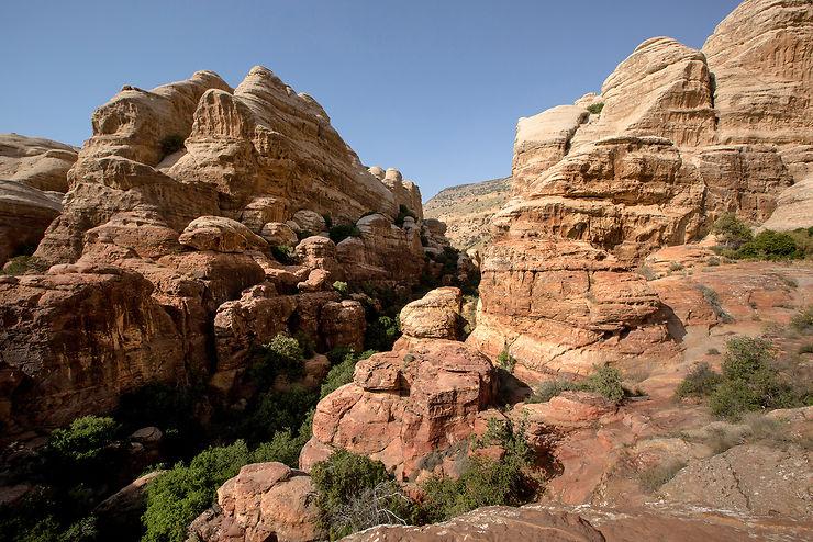 Jordanie - Jordan Trail : un sentier de rando de 650 km à travers la Jordanie