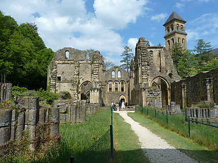 Ruines de l'ancienne Abbaye d'Orval