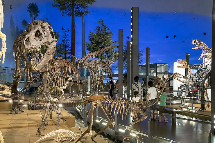 Jour 3 - Rencontre avec des dinosaures à Katsuyama et méditation à Eihei-ji