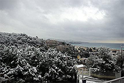 Nice hiver 2010
