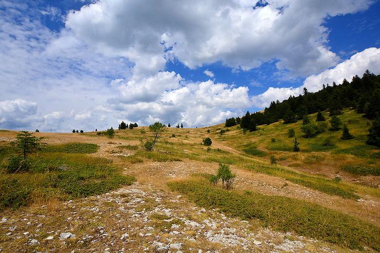La montagne de Lure et son abbaye