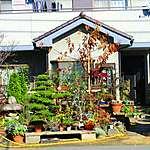 Habitation à Chiba