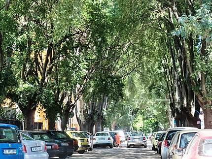 Une rue à Varna