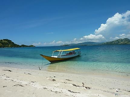 Le parc marin des 17 îles
