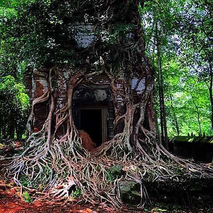 Ta Som à Siem Reap