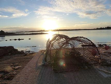Casier solitaire à Saint-Cado, Morbihan