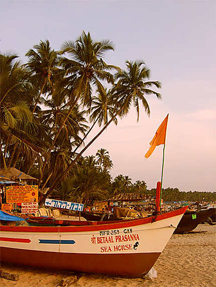 Palolem Beach-Goa
