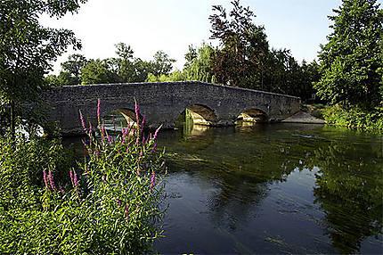 Pont sur la Charente