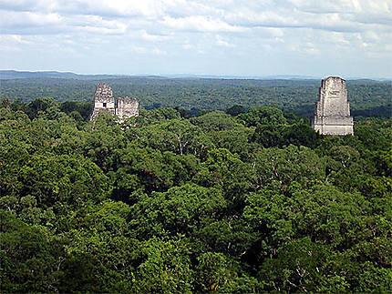 Les temples de Tikal